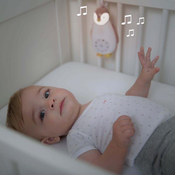 zoe-music-and-light